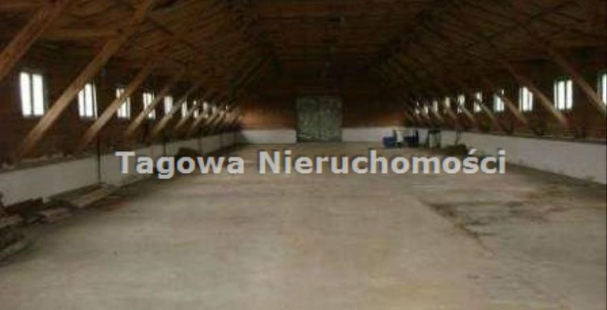 hala na sprzedaż - Lubicz, Nowa Wieś